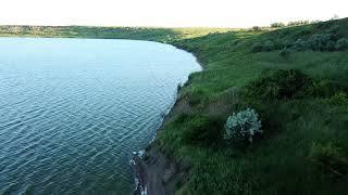 Мор в Новомарьевском лимане связали с природными явлениями. 16001.jpeg