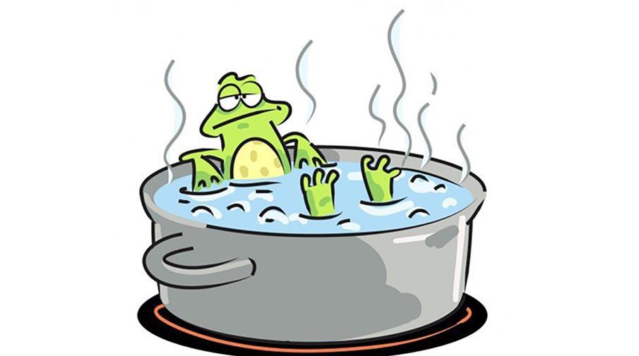 Люди не заметят глобального потепления, как лягушка в кипятке. 15004.jpeg