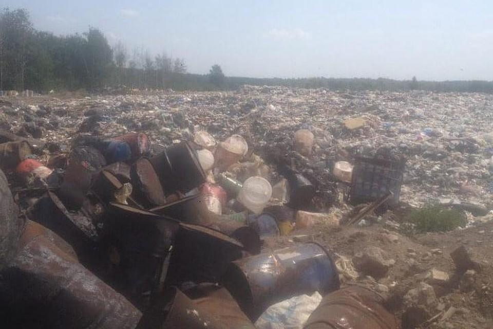 На притоке Оби нашли свалку мазута и иных отходов. 16005.jpeg