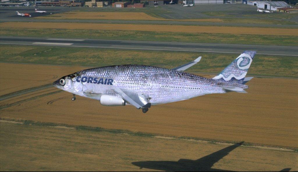 Любитель рыбных блюд устроил скандал в самолете. 15011.jpeg
