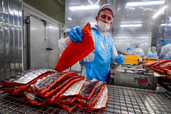 На Сахалине построят новый завод по переработке рыбы. 14057.jpeg