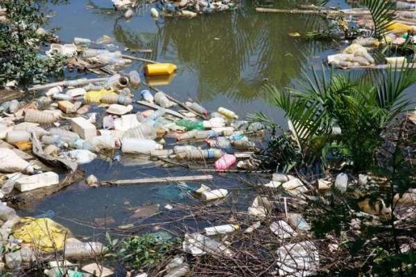 Последствие загрязнения речной экосистемы Амазонии. 14062.jpeg