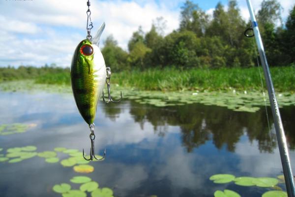 Рыбалка - новичку на заметку.. 14063.jpeg