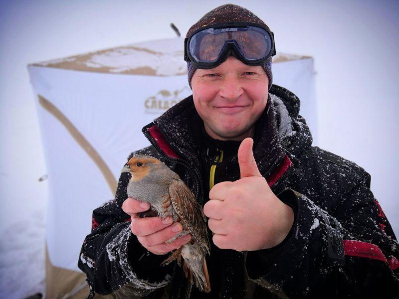 Сызранский рыбак спас куропатку от смерти. подстреленная куропатка
