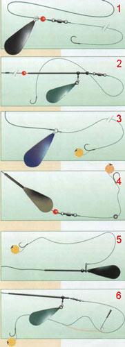 Шесть видов карповых оснасток для начинающих