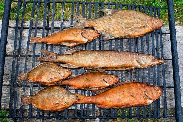 Как коптить рыбу