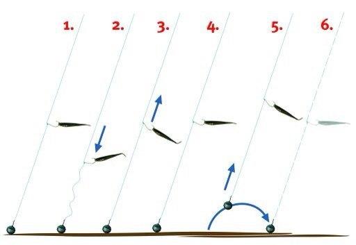 Техника ловли на дроп-шот (dropshot)