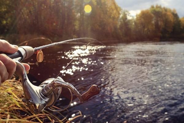 Рыбалка со спиннингом в весеннюю пору. 15118.jpeg
