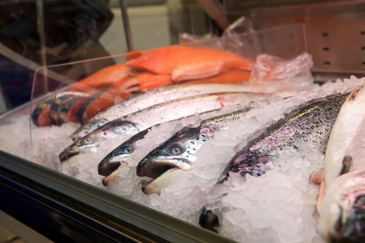 """Наша рыба"" придет в Мурманск на полмесяца раньше. 16129.jpeg"