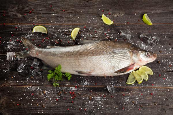 Непредсказуемая сибирская рыба. 14143.jpeg