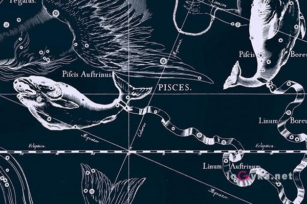 В Летучей рыбе нашли 2018jgq. 14144.jpeg