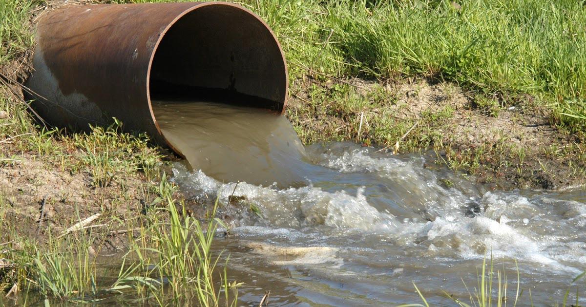 Под Саратовом жалуются на слив нечистот в реку. 16151.jpeg