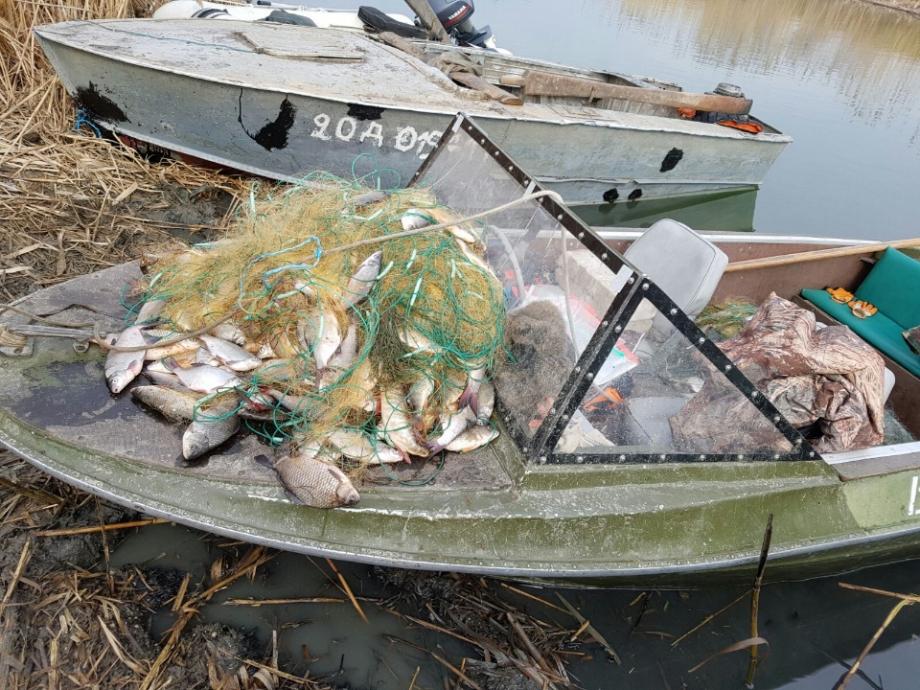 Липчанин выплатит 30 тысяч рублей за ловлю сетью. 16202.jpeg