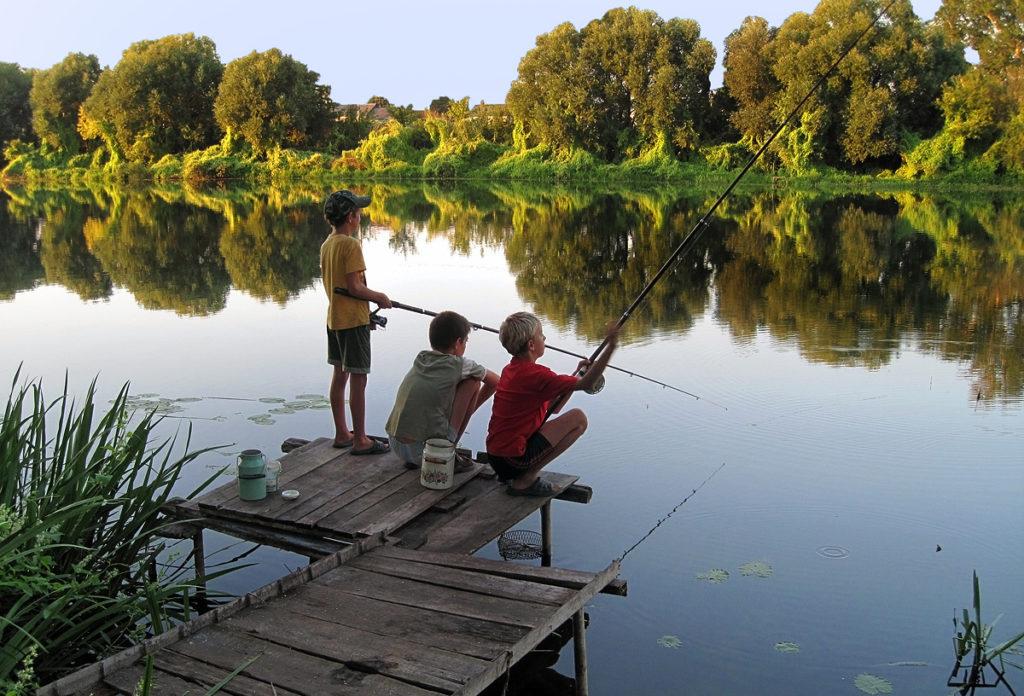 В Госдуме приняли закон о любительской рыбалке. 14224.jpeg