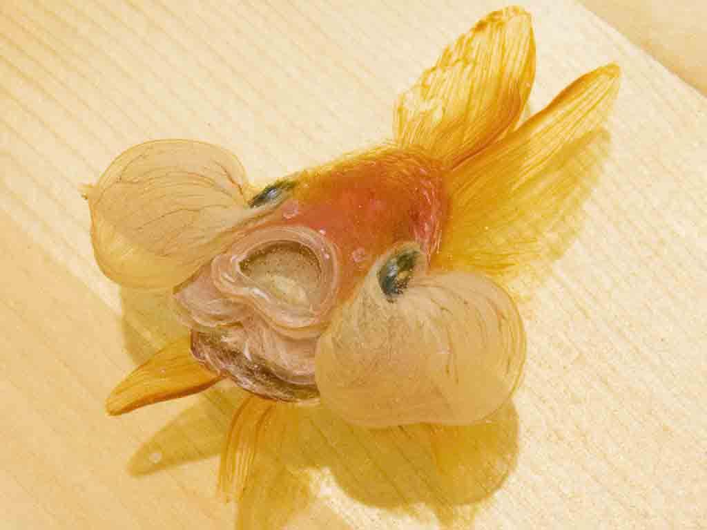 Wordwoman выложил коллекцию 3D арт рыб. рыба