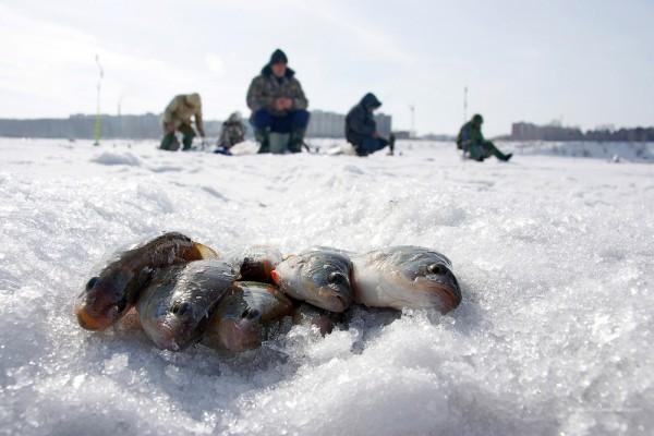 Рыбацкая байка. Первый лёд.. 14235.jpeg