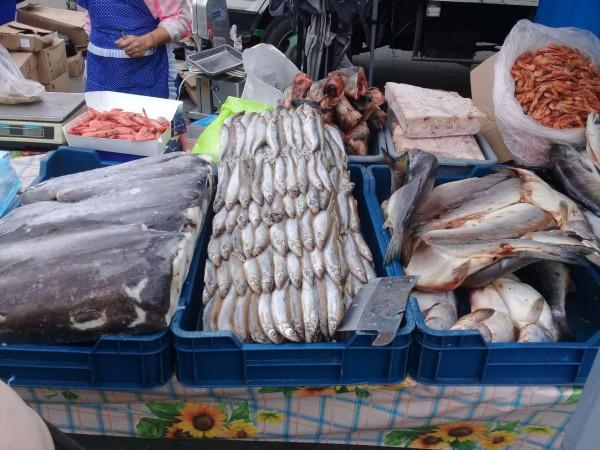 Филиппины заинтересованы в поставках российской рыбы из Приморья. рыба, поставки, Приморье, Филиппины