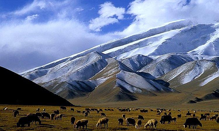 Россия поможет Киргизии с пополнением бюджета. киргизия