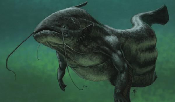 Сахара была морем, где жили гигантские сомы и морские змеи.. палеонтология, море, пустыня, Сахара, рыбы, сомы, морские змеи