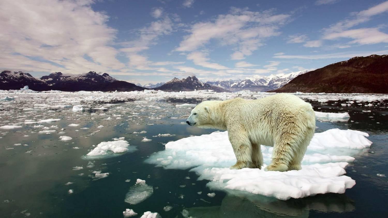 По темпам глобального потепления Россия первая в мире. потепление