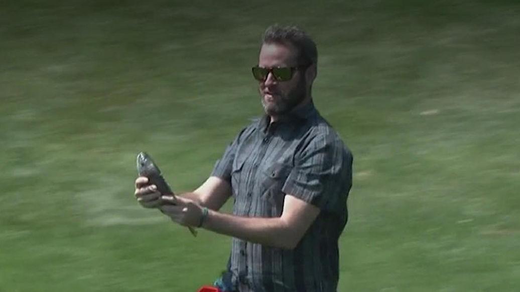 Игрок в гольф спас рыбу, упавшую с неба. рыба