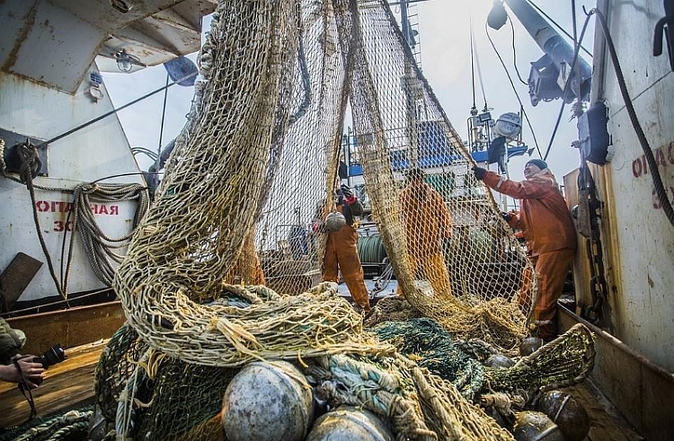В продажу обещают вернуть советскую иваси. рыболовство