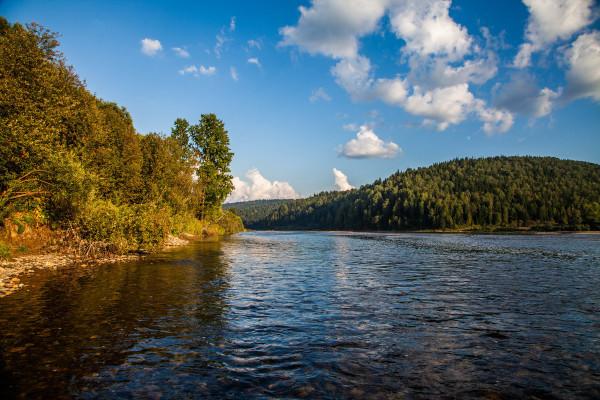 Гидрологи зафиксировали повышение уровня воды в реке Томь. экология, вода, река, Томь