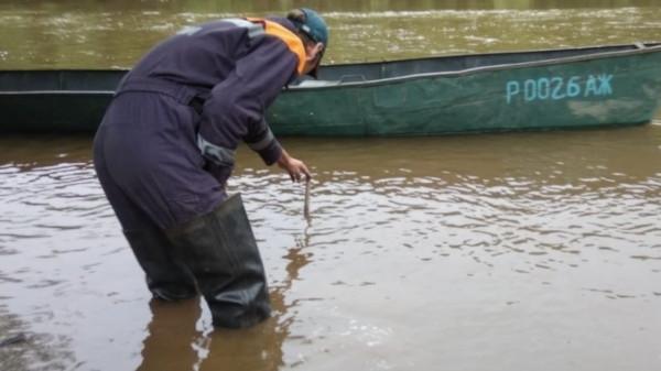 В ЕАО ввели режим ЧС в связи с угрозой наводнения. река, Амур, наводнение, Еврейская автономная область