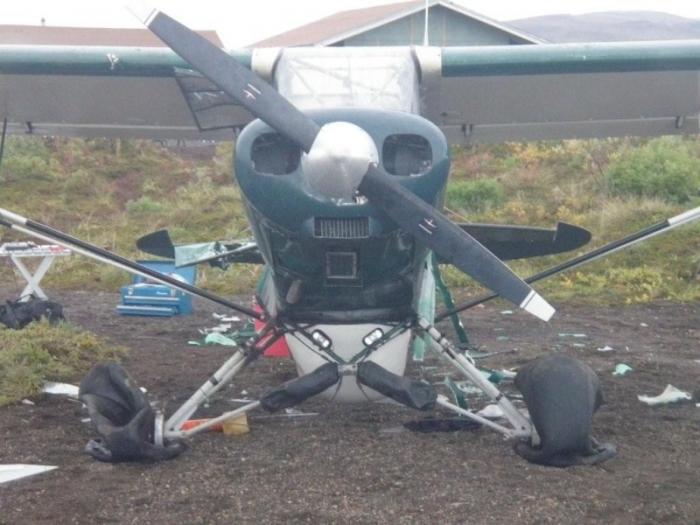 Медведь растерзал самолет рыбаков. самолет