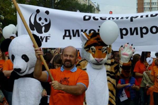 WWF помогает распознать на прилавках вымирающие виды. рыбы, морские обитатели, WWF, фонд дикой природы