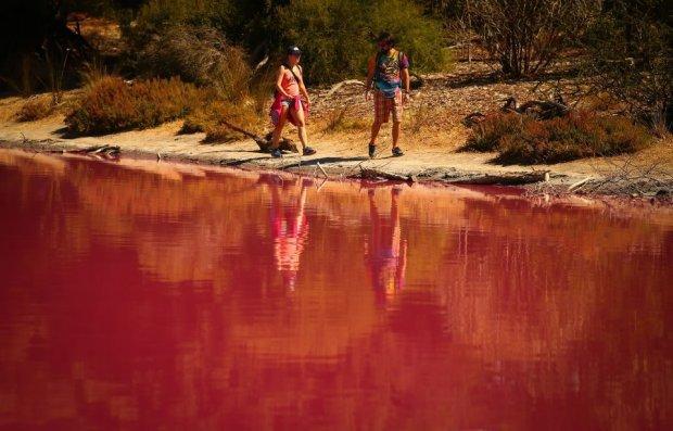 В мире что-то случилось со многими озерами – они стали розовыми. озеро