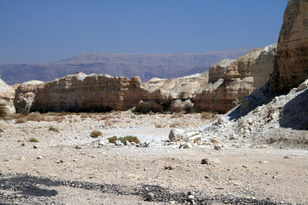 Тайна подземного моря под пустыней раскрыта учеными. пустыня, море, ученые, исследование, Израиль