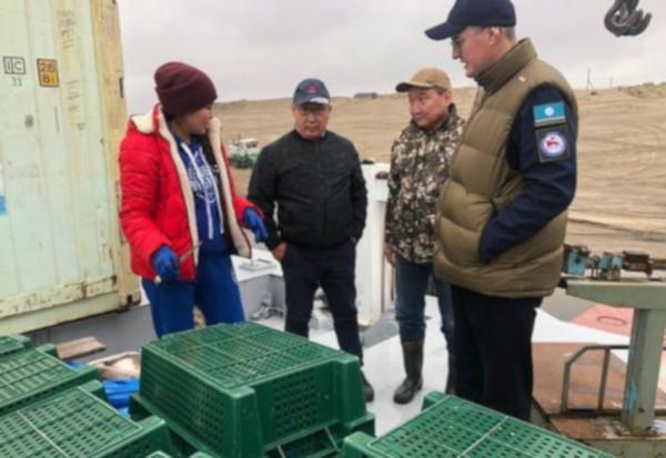 Якутскую рыбу хотят активнее продвигать. рыба, продажа, Якутия