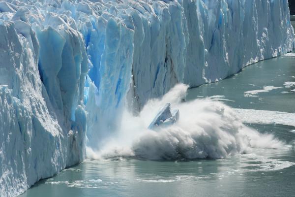 Глобальное потепление приведет к повышению уровня ртути в морепродуктах и рыбе. рыба, климат, глобальное потепление, ртуть