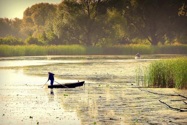 Рыбаки в Ленобласти вслед за лодкой лишатся более 100 тысяч рублей. рыба, рыбалка, рыбак, штраф, Ленинградская область