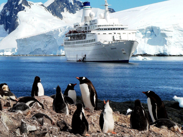 Британская газета сообщила об угрозе Арктике. круиз, туризм, Арктика