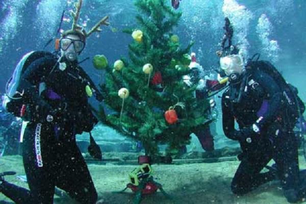 Казанские драйверы встречали Новый год под водой. 14403.jpeg