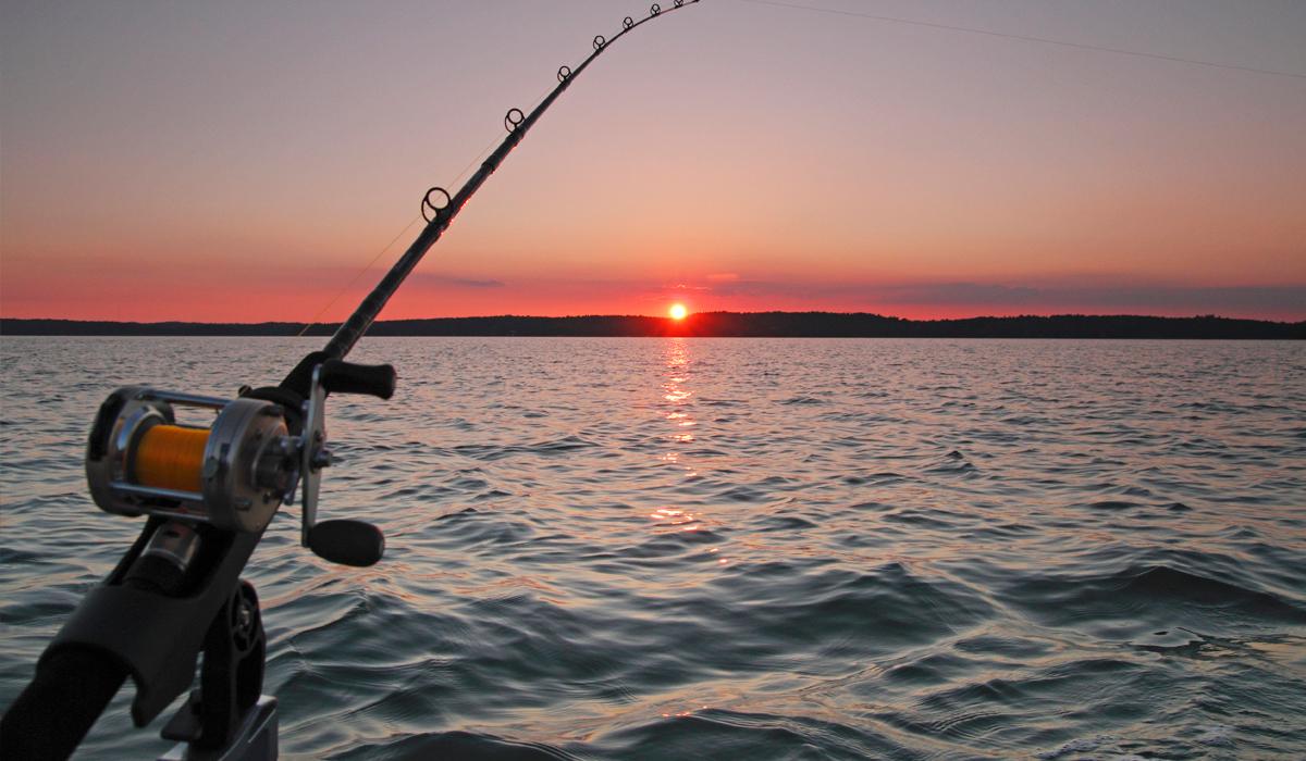 Секреты рыбалки в небольших водоёмах. 13410.jpeg