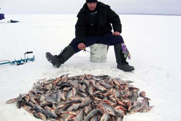 Как атмосферное давление влияет на зимнюю рыбалку. 14417.jpeg