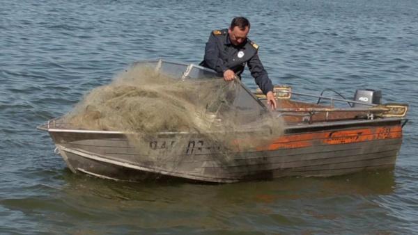 Рыбак сдал инспекторам браконьеров. рыба, браконьеры, река, Воронеж