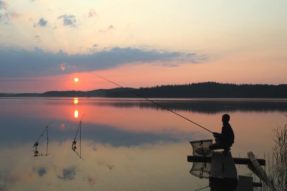Анатолий Козырь: «Мы перестали помогать природе воспроизводить рыбные запасы». рыбалка