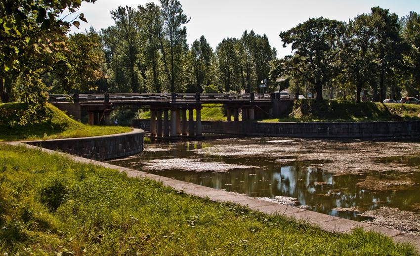 В Староладожском канале может погибнуть рыба. 13471.jpeg