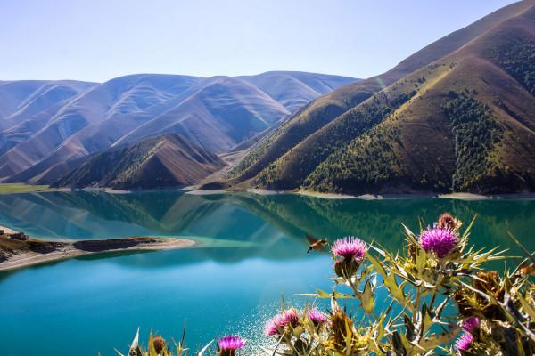 Восстановление озер в Дагестане позволит выпускать в море до 2,5 млрд мальков в год. рыба, озера, Дагестан