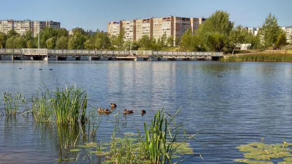 В большинстве озер Нижнего Новгорода купаться не рекомендуется. экология, озера, Нижний Новгород