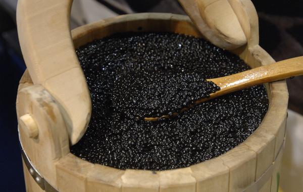 В Лесосибирске у браконьера изъято более 96 кг рыбы осетровых пород и 3 кг черной икры. рыба, браконьер, осетр, икра, Лесосибирск