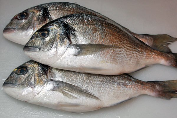 Рыба-деликатес. 13500.jpeg