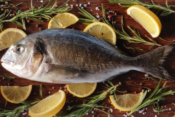 «Золотая рыбка» Атлантики. 13505.jpeg