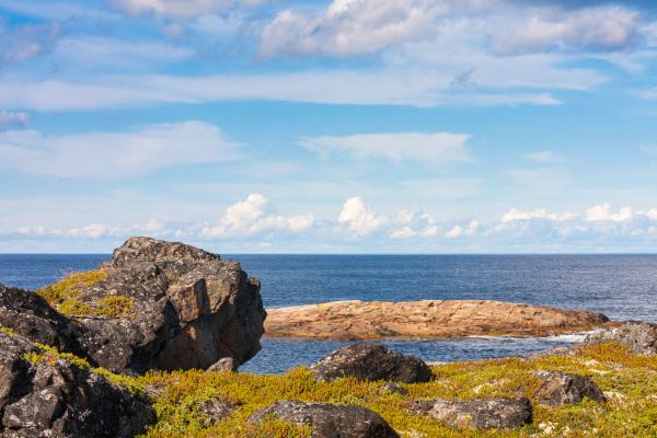 Роспотребнадзор проверит радиационный фон на островах Белого моря. море, Белое море, острова, радиационный фон