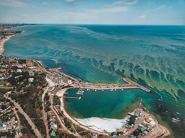Туристов напугало цветение моря - мэрия Одессы. туристы, море, Одесса