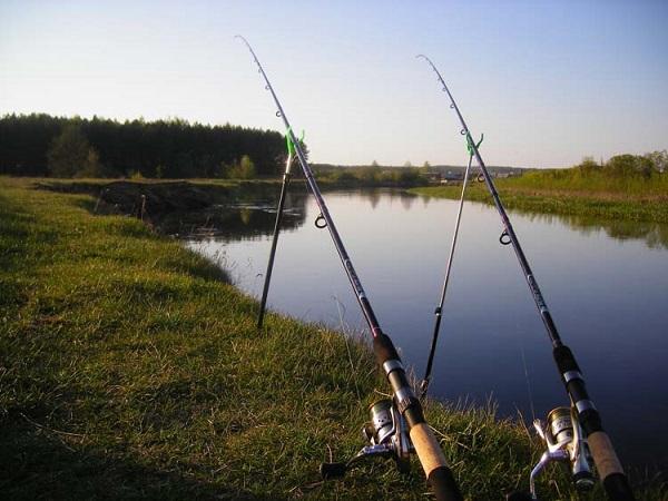 Рыболовные снасти для открытой воды. 15524.jpeg